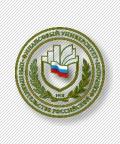 Теоретико-методологические подходы к минимизации стратегических рисков российских металлургических групп